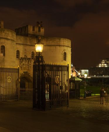buckingham palace lighting at night